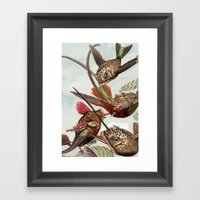 Flying Fish 2 Framed Art Print