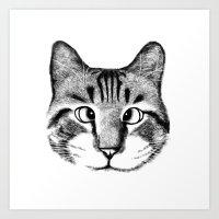 Strabismus Cat Art Print