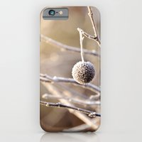 iPhone & iPod Case featuring Hanging by a Thread by Tracey Tilson Photography