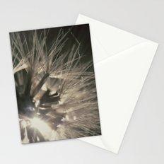 Macro sunset Stationery Cards
