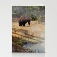 Buffalo At Thermal Pool Stationery Cards