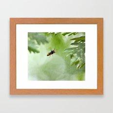 Bzzzzzzzz Framed Art Print