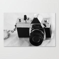 Smile! Canvas Print