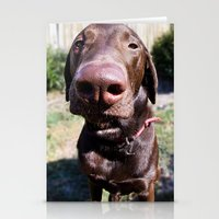 The Nose Knows Stationery Cards