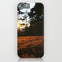 iPhone & iPod Case featuring Fall's Last Light by PDXLinds