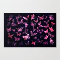 Night butterflies Canvas Print