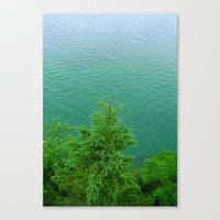 MILELE Canvas Print