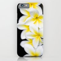 iPhone & iPod Case featuring Plumeria obtusa Singapore White by Sharon Mau