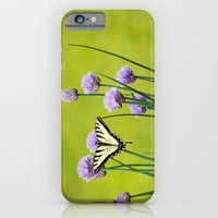 iPhone Cases featuring Sugar and Spice by Christina Rollo