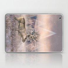 Stillness Of Winter Laptop & iPad Skin