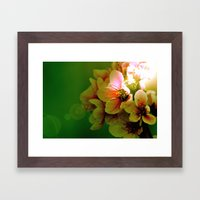 Flora Framed Art Print