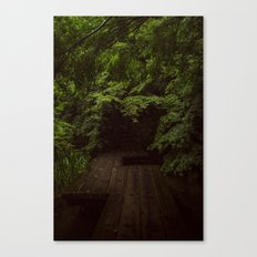 The Path Less Travelled  Canvas Print