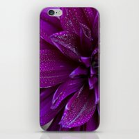 purple rain iPhone & iPod Skin
