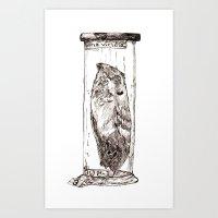 Frogmouth Art Print