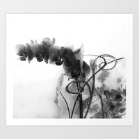 Flowers In Black Art Print