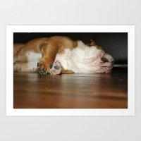Lazy Bulldog Art Print