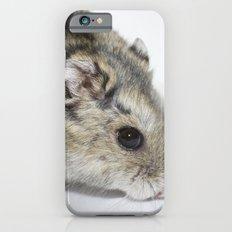 cheesecake (my hamster)  iPhone 6 Slim Case