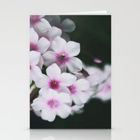 Summertime Phlox Stationery Cards