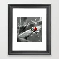 Ladybug I Framed Art Print