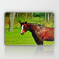 Equine Beauty Laptop & iPad Skin