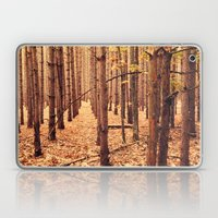 A Cathedral of Trees Laptop & iPad Skin