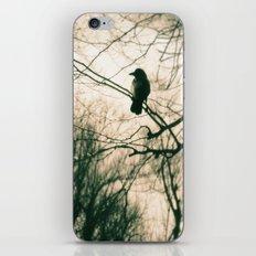 Crow Blur iPhone & iPod Skin