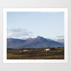 Connemara  - Horse and Mountains Art Print