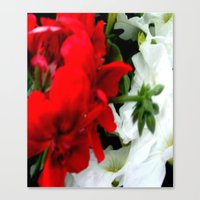 Sommer in nature Canvas Print