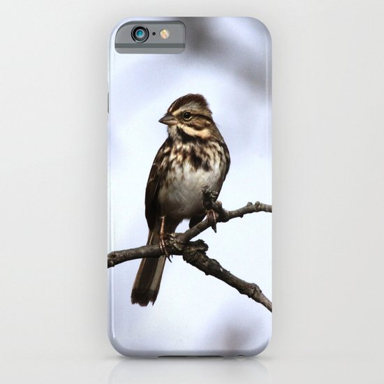 Song Sparrow iPhone & iPod Case
