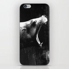Seal 2 iPhone & iPod Skin
