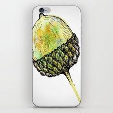 acorn iPhone & iPod Skin
