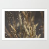 Blowing In The Wind. Art Print