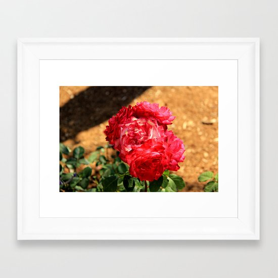 flowers again Framed Art Print