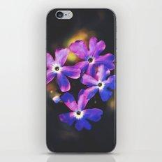 Watch Me Unfold iPhone & iPod Skin