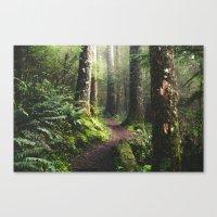 Oregon Pathway Canvas Print
