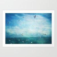 brighton seagulls 3 Art Print