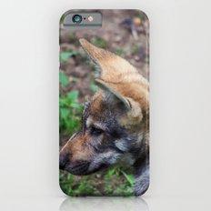 Canis Lupus Lupus Slim Case iPhone 6s