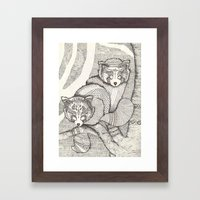 Red Pandas Framed Art Print