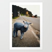 Blue? Sheep? Art Print