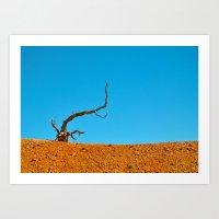 The Tree at Bryce Canyon National Park. Utah, USA Art Print
