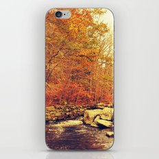 Out of Doors 2.0 iPhone & iPod Skin