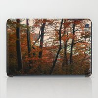 Autumn In The Woods 3 iPad Case