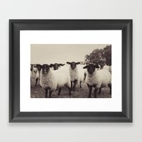 You Looking At Me Framed Art Print