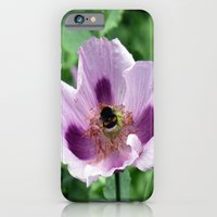 iPhone Cases featuring Poppy and Bee by Lynn Bolt