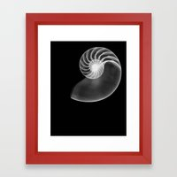 Golden Ratio Framed Art Print