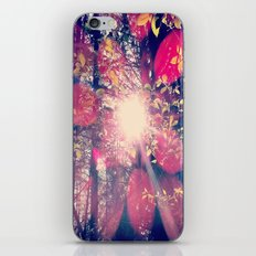 Colour Of Truth  iPhone & iPod Skin