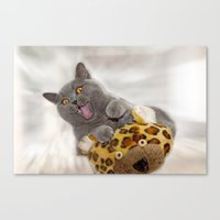 Supersonic Kitty Canvas Print