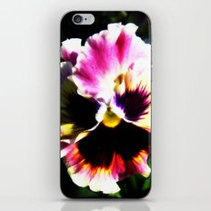 Petals with Pizzazz iPhone & iPod Skin