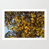Beech Leaves Autumn Art Print