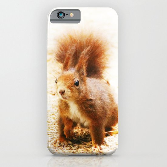 SQUIRREL   iPhone & iPod Case